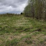 Изображение со страницы: Земельный участок 1700-3